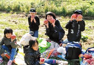 新潟県 上越市 大島グループ リンゴ狩り1